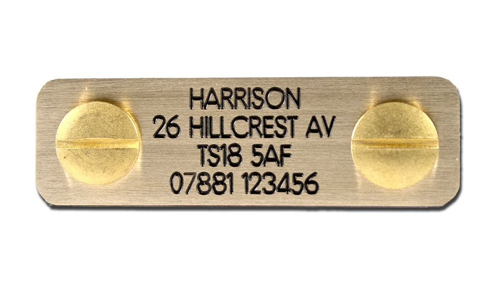 Engraved Bolt on dog ID plate Polished Brass 50mm x 15mm
