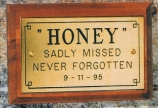 Rectangular Engraved Wall Plaque with wood plinth